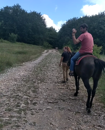 With horses on the Roman roads